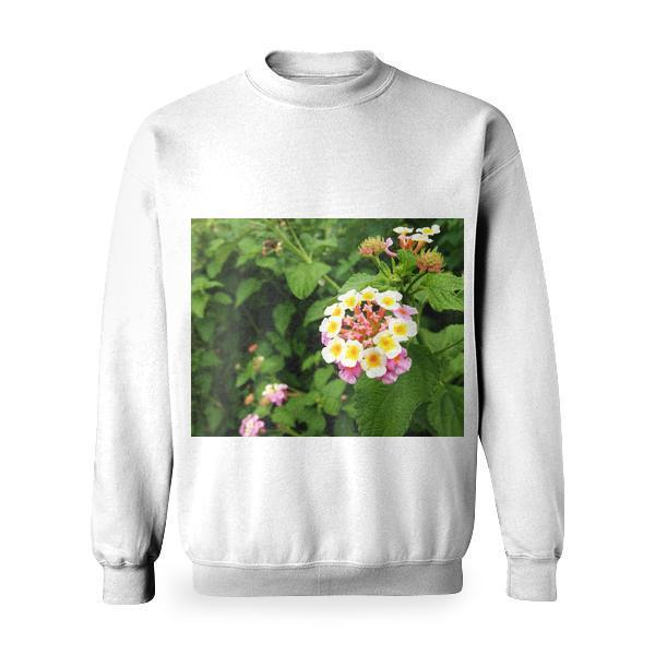 Yellow White And Pink Petaled Flower Basic Sweatshirt