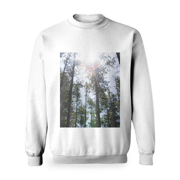Tall Trees Under Sunny Sky During Daytime Basic Sweatshirt