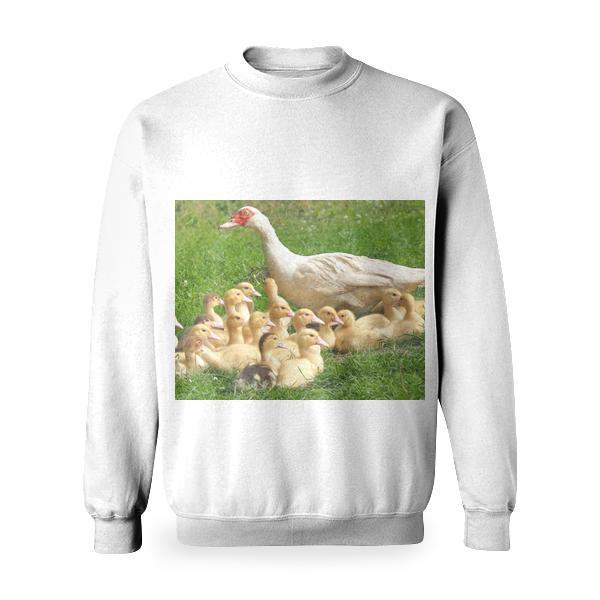 White Duck With Ducklings In Green Grass Field Basic Sweatshirt