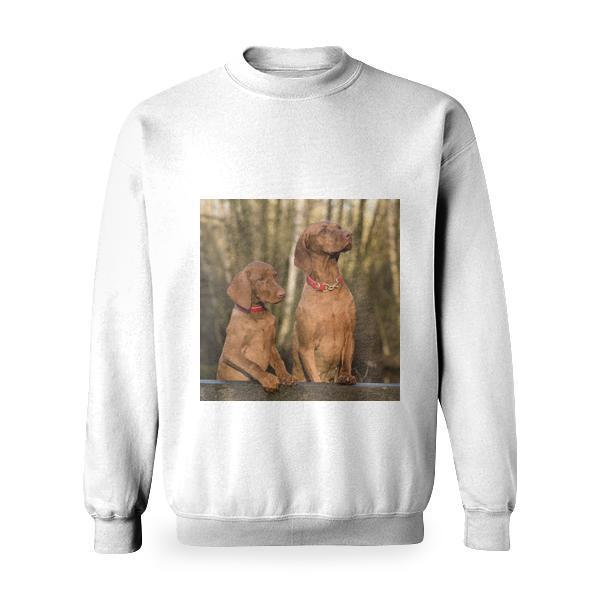 2 Vizsla Dogs Standing On Brown Wood Plank Basic Sweatshirt