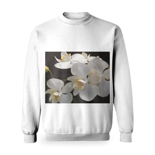 White And Yellow Orchid Flowers Basic Sweatshirt