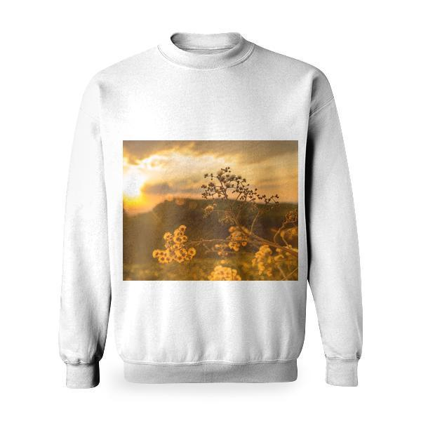 White Petaled Flowers At Golden Hour Basic Sweatshirt