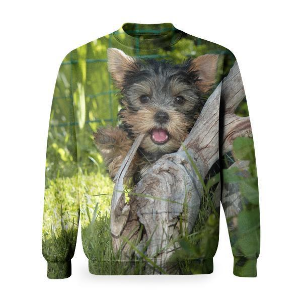 Yorkshire Terrier Puppy Hiding Behind Tree Root Basic Sweatshirt