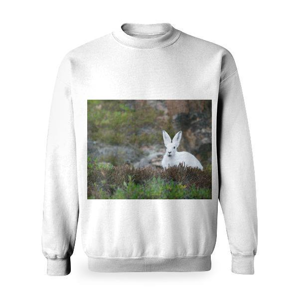 White Rabbit On Brown And Green Grass Field During Daytime Basic Sweatshirt