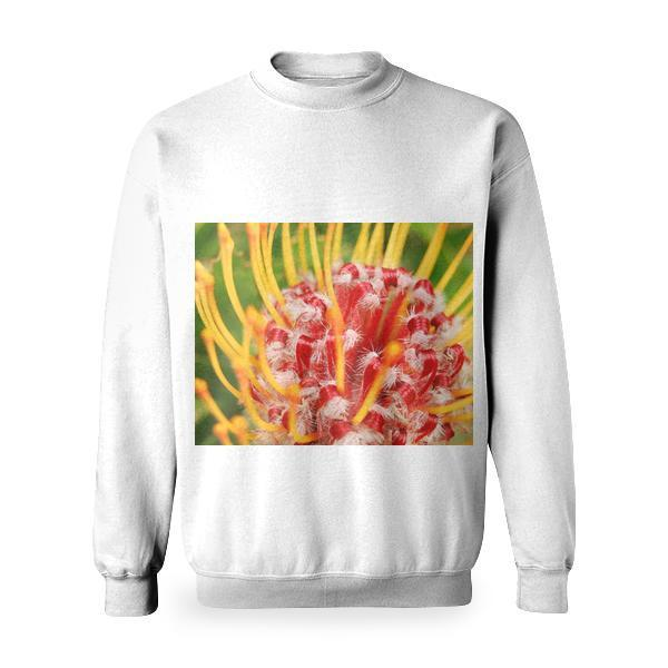 Yellow Red Petaled Flower Basic Sweatshirt