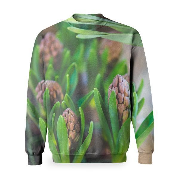 Young Young Hyacinth Bulb Basic Sweatshirt