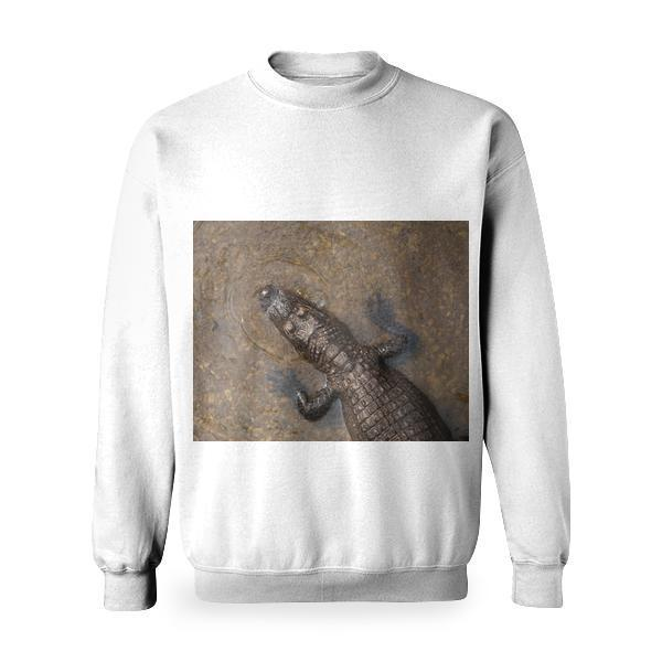 Water Animal Reptile Amphibian Basic Sweatshirt