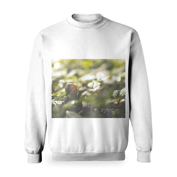 Brown Snail On Green Leaves During Daytime Basic Sweatshirt