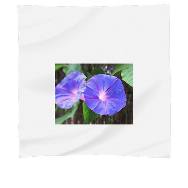 2 Blue Flowers During Daytime Scarf