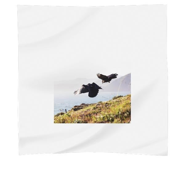 2 Eagle Near Green Grass And Cliff During Daytime Scarf