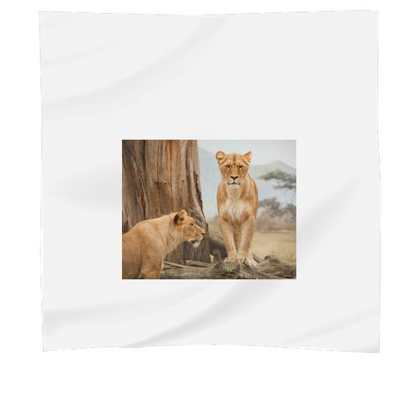 2 Lion On Grass Field During Daytime Scarf
