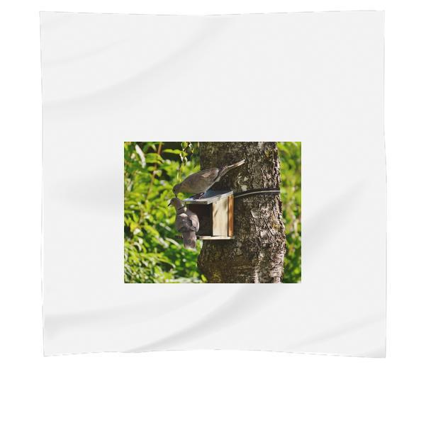 2 Brown Pigeons On Tree During Daytime Scarf