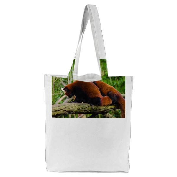 Brown And White Animal On Brown Tree Trunk Tote Bag