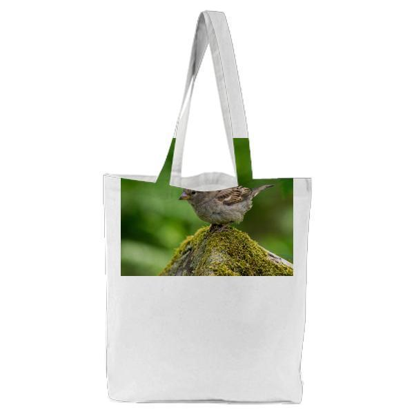 Grey And White Small Bird On Grey Moss Covered Rock Tilt Screen Photography Tote Bag