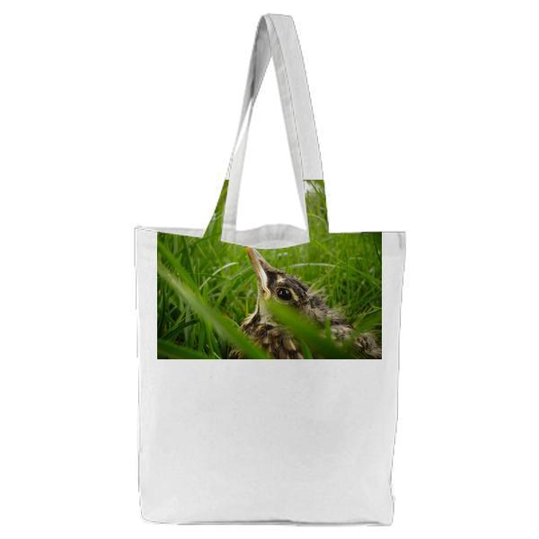Black And Brown Small Bird On Green Grass Field During Daytime Tote Bag