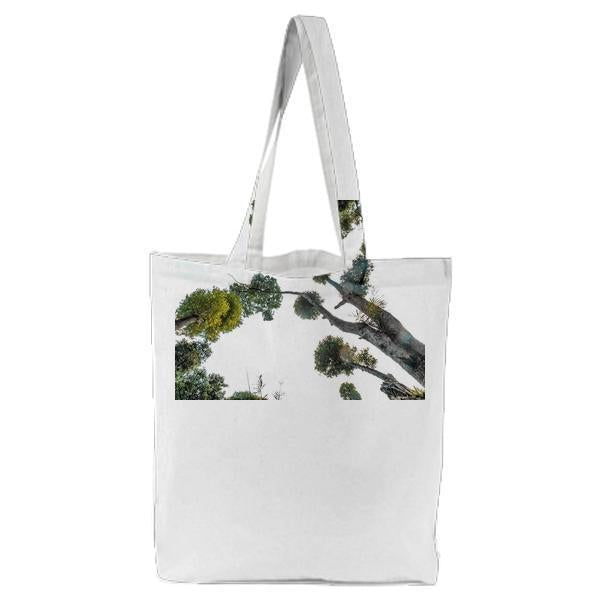 Grey Trunk Green Leaf Tree During Daytime Tote Bag