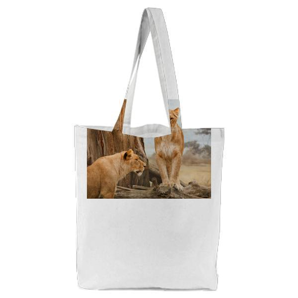 2 Lion On Grass Field During Daytime Tote Bag