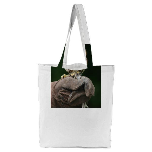 Brown And White Owl On Black Gloves Tote Bag