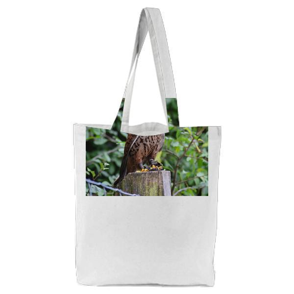 Brown Falcon On Brown Wooden Surface Tote Bag