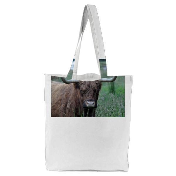 Brown And Beige Highland Cattle Tote Bag