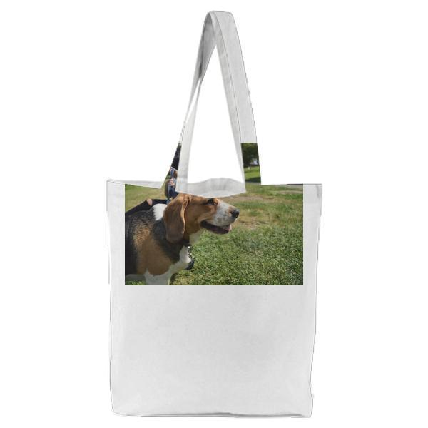 Animal Dog Pet Park Tote Bag
