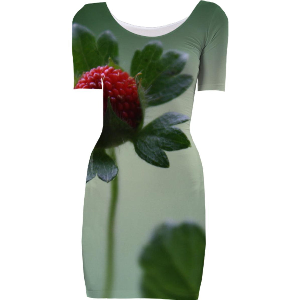 Berry Tale Bodycon Dress