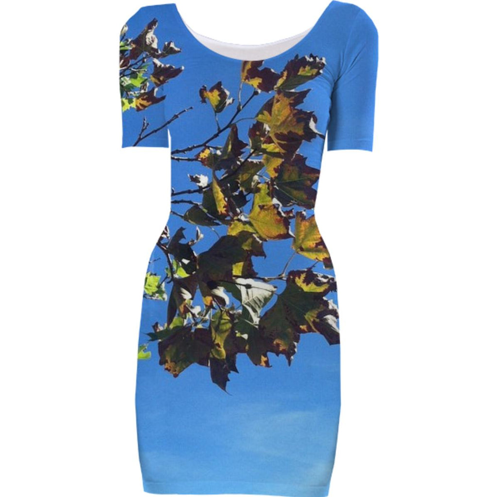 Changing Leaves Dress