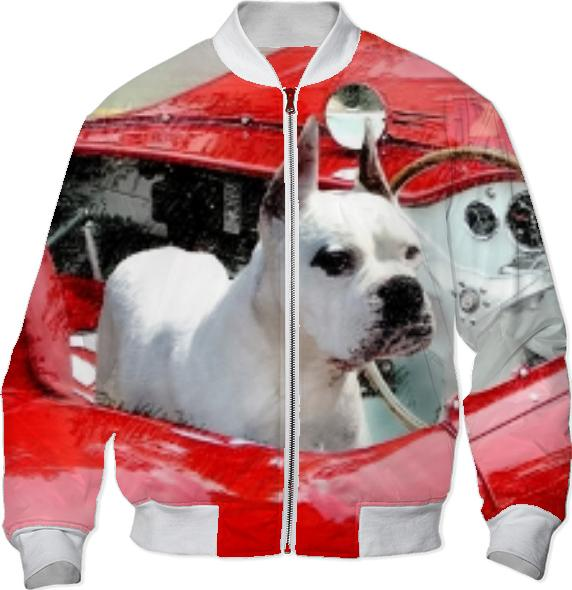 White Boxer dog in red sportscar Bomber Jacket