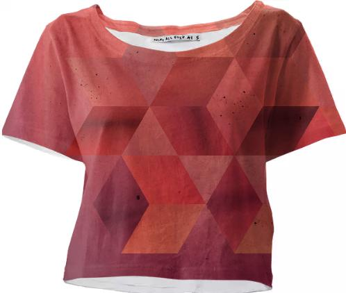 Shades of red crop top