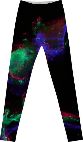 FIBROBLAST LEGGINGS