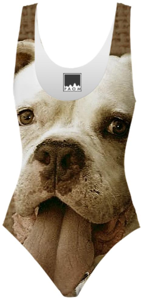 American Bulldog one piece swimsuit
