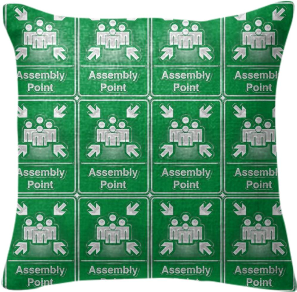 Assembly Point Pillow
