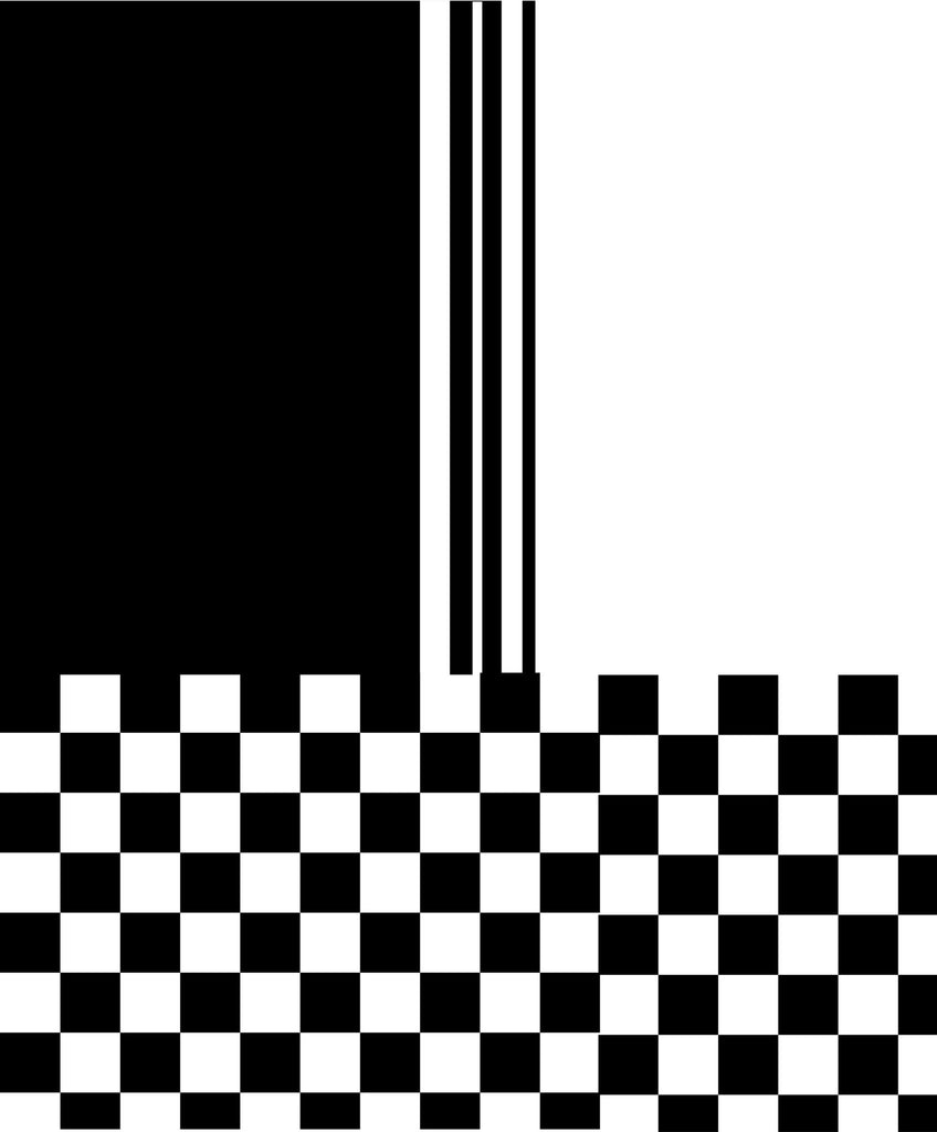 Mod black and white striped check v2