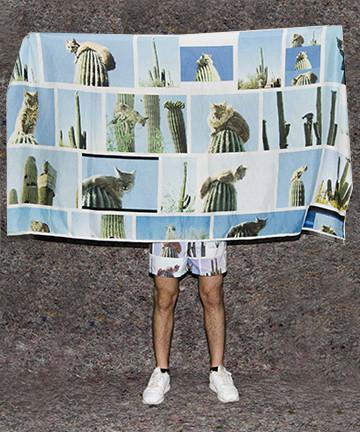The Perfect Nothing Catalog Sarong Landon Metz bobcat on cactus