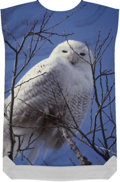 Snowy White Owl Arctic Bird against Blue Sky
