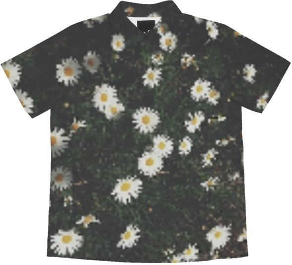 daisy garden dirt and summer blouse