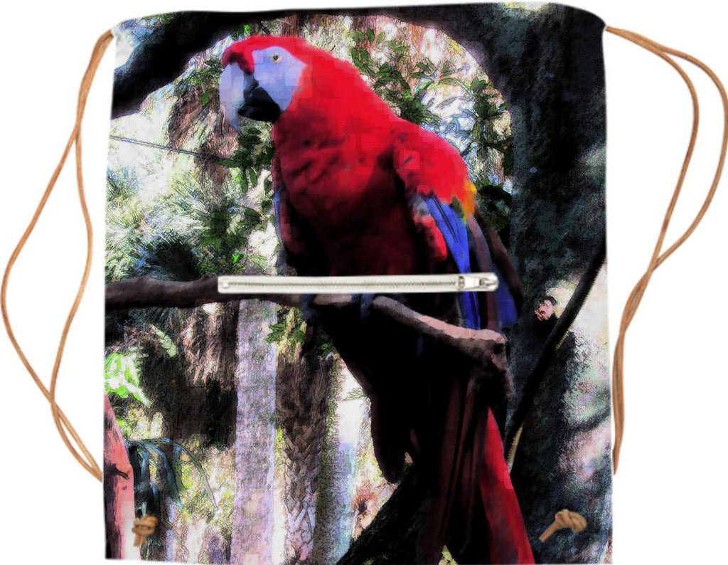 Red Macaw 2332