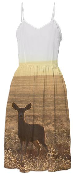 Morning Meadow Dress