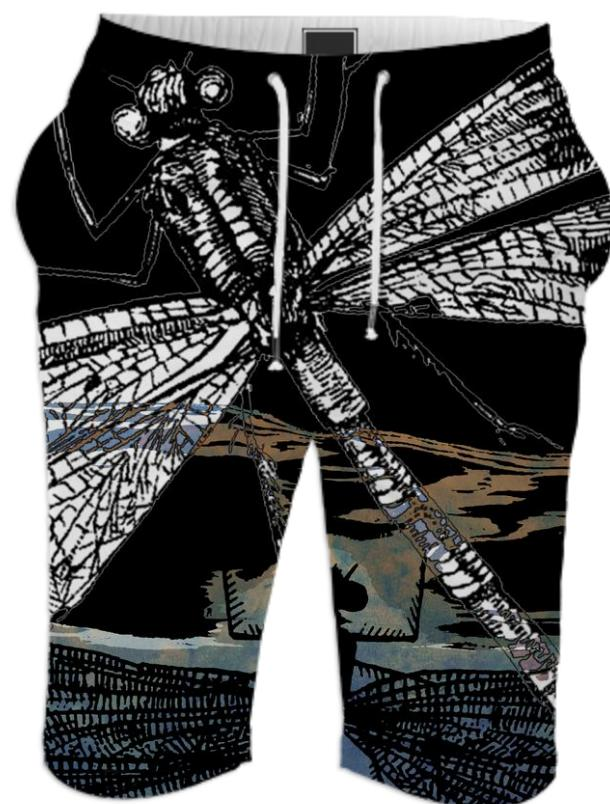Dragonflies Summer Short 1