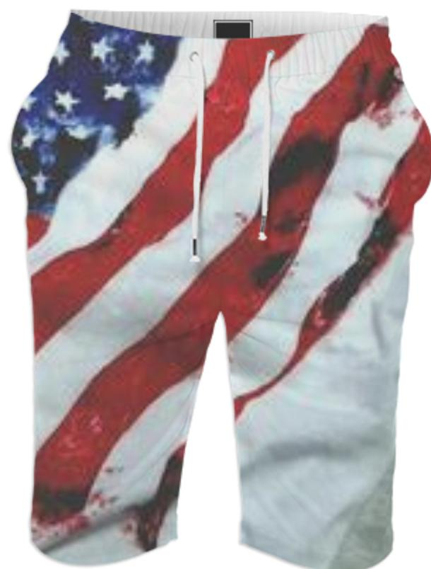 A1 Since Day 1 Summer Shorts American Flag