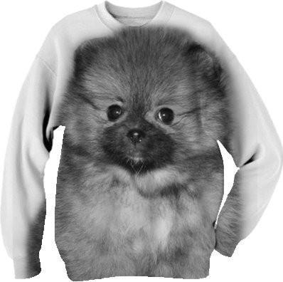 Pomeranian puppy dog sweatshirt