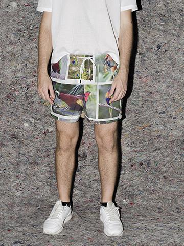 PAOM, Print All Over Me, digital print, design, fashion, style, collaboration, frank-traynor, frank traynor, Swim Short, Swim-Short, SwimShort, The, Perfect, Nothing, Catalog, Trunks, Aidan, Koch, world, most, colorful, bird, spring summer, unisex, Poly, Swimwear