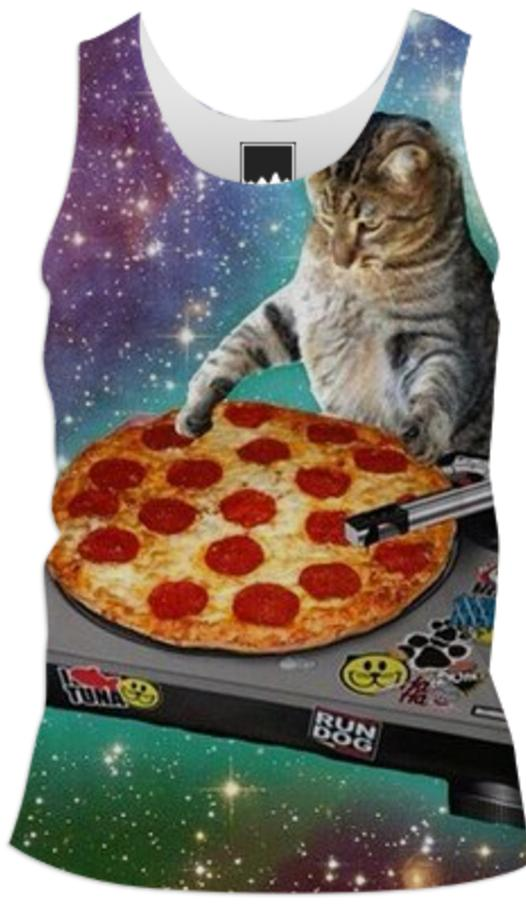 The pizza space cat DJ