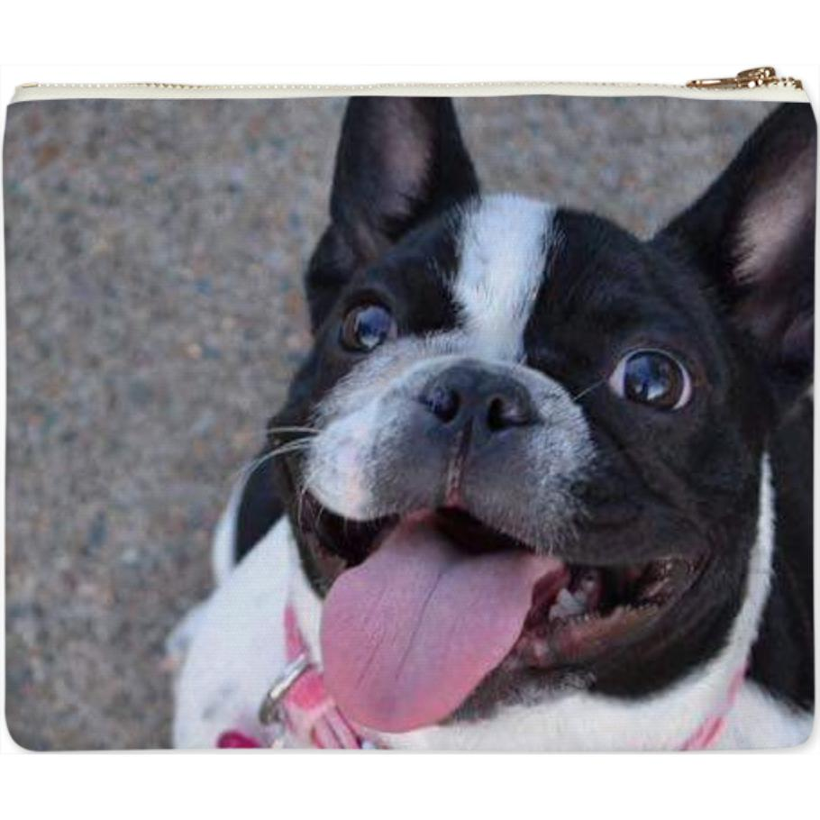 izzy pouch canvas