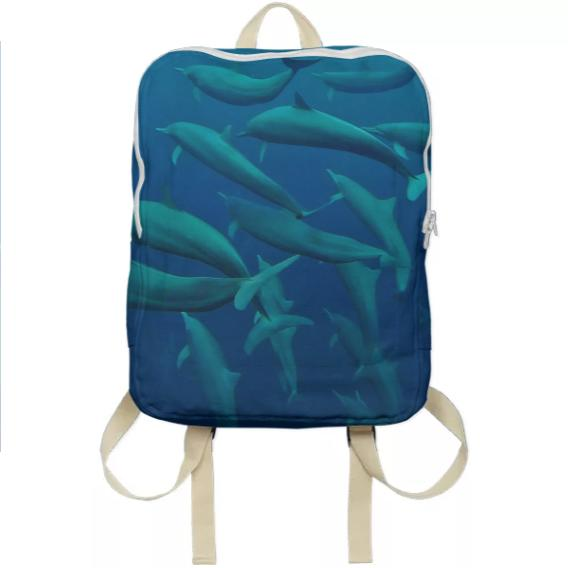 Dolphins in the Blue Back Pack