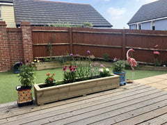 Planters on Decking