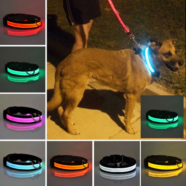 LED Flashing Dog Cat Collar Puppy Pet Tag Glow Light Safety Nylon Leash Harness Collar