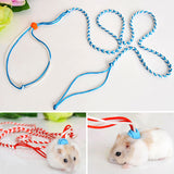 Animal Pet Leash