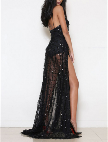 Long Dress Sequined Fringed