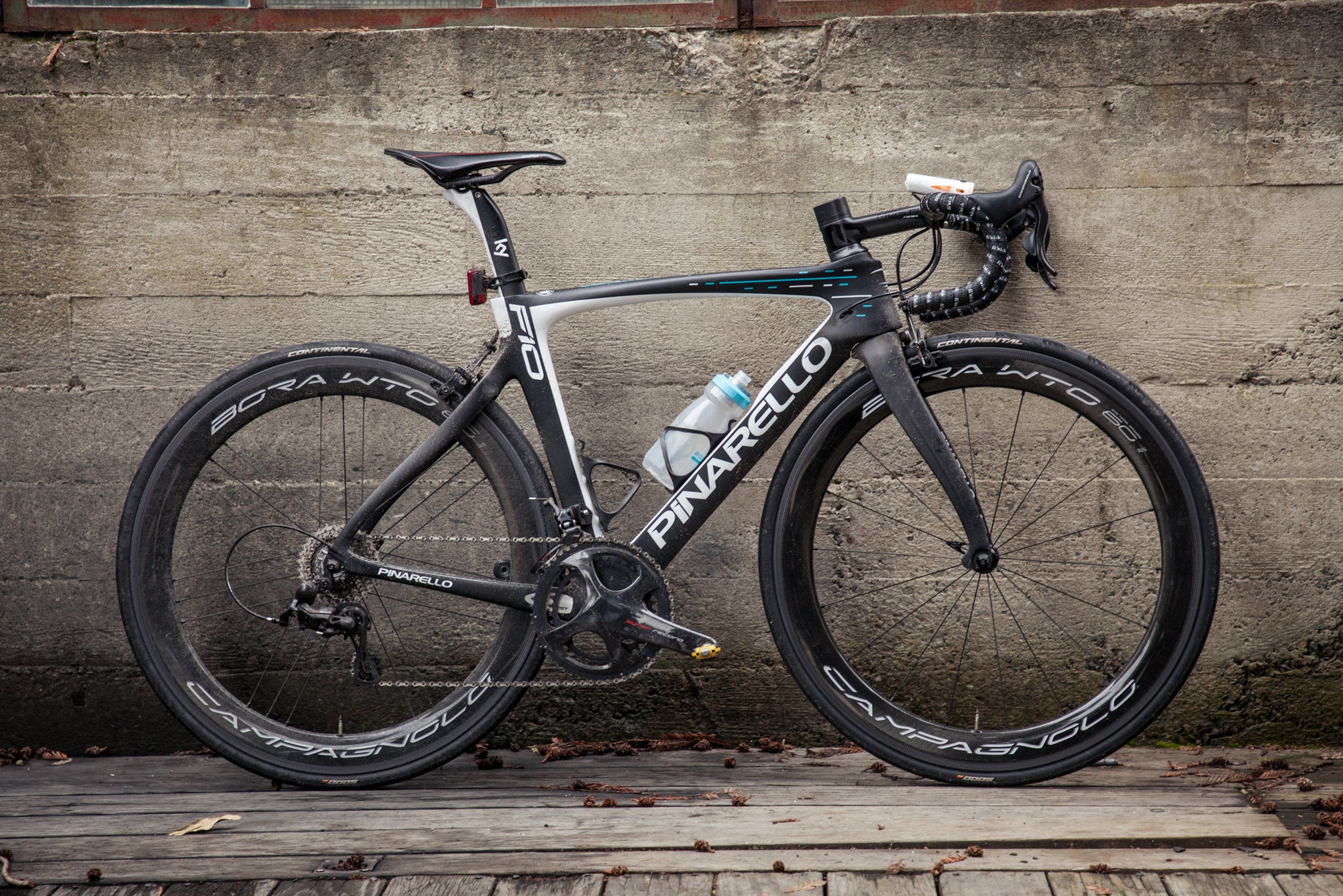 dogma shootout f10 profile